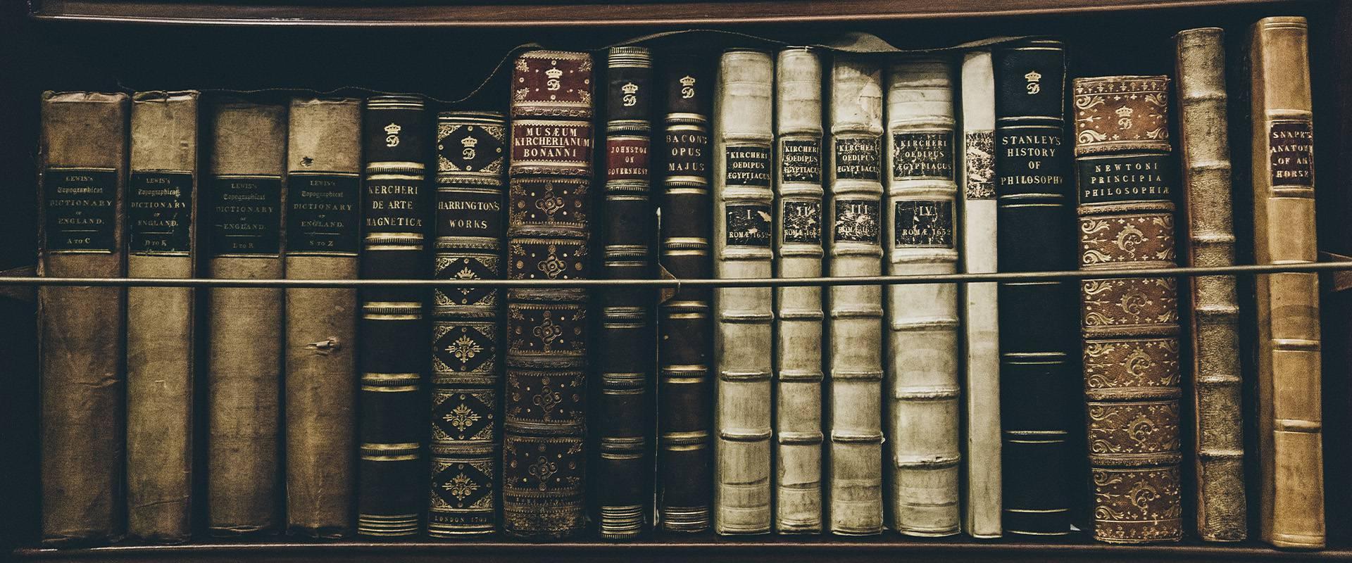 Die Kronik, Bücher in der Bibliothek. Wrohm-Dithmarschen